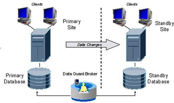 گروه توسعه - دانلود پایان نامه پایگاه داده های بزرگ و داده کاوی آن ها - دانلود پایان نامه پایگاه داده های بزرگ, دانلود پایان نامه پایگاه داده, الگوریتم های ژنتیک, خلاصه سازی و به تصویر در آوردن داده ها, داده کاوی و olap, داده کاوی و انبار داده ها, درخت های انتخاب, رگرسیون منطقی, ساختن یک پایگاه داده داده کاوی, عملیات های داده کاوی, ماتریس های پیچیدگی, مدل سازی پیشگویی کننده, مدل ها و الگوریتم های داده کاوی, مدل های پیش بینی داده ها, مراحل فرایند کشف دانش از پایگاه داده های بزرگ, مراحل کشف دانش, مقدمه ای بر دادهکاوی, کاوش در داده ها, رشته مهندسی فناوری اطلاعات, رشته مهندسی کامپیوتر, پایان نامه, پایان نامه رشته مهندسی کامپیوتر, پایان نامه رشته مهندسی فناوری اطلاعات, پایان نامه مهندسی فناوری اطلاعات, پایان نامه مهندسی کامپیوتر